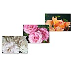 Floral Photorealism Wall Art