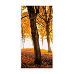 Well-Travelled Left Autumn Leaves Wall Art