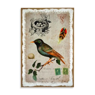 Sparrow Postcard Wall Art