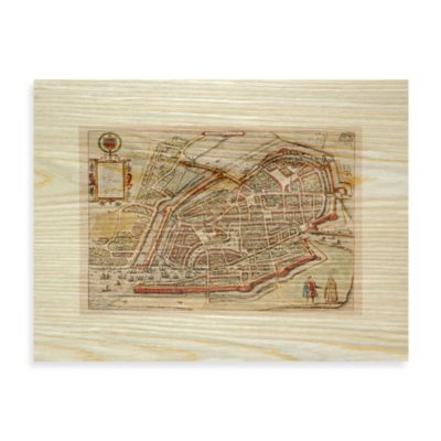 Antiqe Maps Birds-Eye View Wall Art