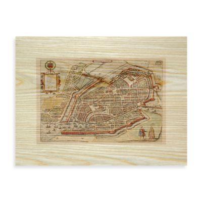 Antiqe Maps Birds-Eye View Wall Art
