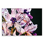 Purple Iris Wall Art