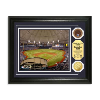 Tampa Bay Rays MLB Stadium Dirt Coin Photo Frame
