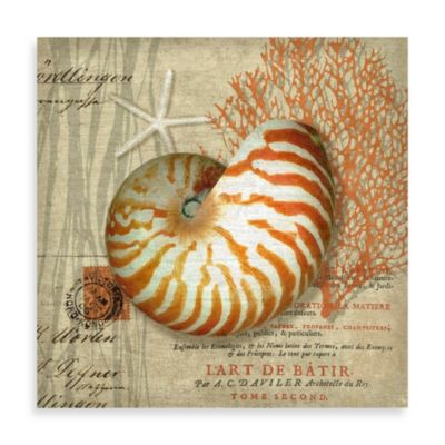 Martinique Nautilus Postcard Wall Art