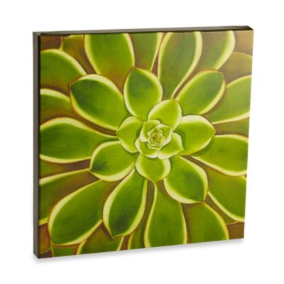 Graham & Brown Agave Ombre Laquer Wall Art