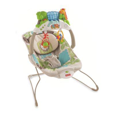 Fisher-Price® Rainforest Friends Deluxe Bouncer - from Fisher Price