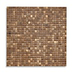 Jeffan International Natural Coconut Wall Display