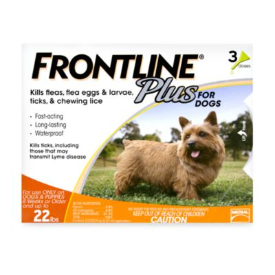 Frontline® Plus for Dogs up to 22 Pounds