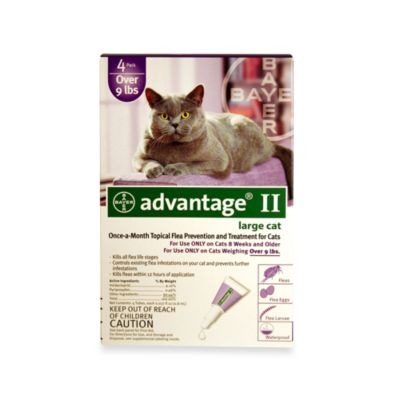 Advantage® II 4-Pack for Large Cats