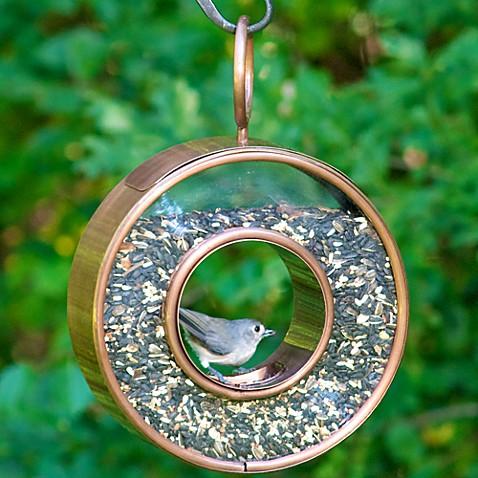 Good Directions Fly Thru Bird Feeder In Venetian Bronze