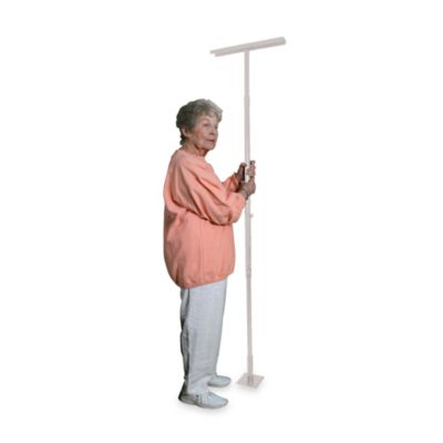 Drive Medical EZ Assist Pole