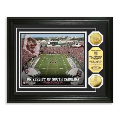 University of South Carolina Williams-Brice Stadium 24K Gold Plate Coin Photo Mint Frame