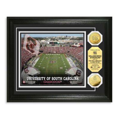 Carolina Williams Brice Stadium 24K Gold Plate Coin Photo Mint Frame