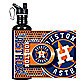 Houston Astros Stainless Steel Water Bottle
