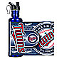 Minnesota Twins Stainless Steel Water Bottle