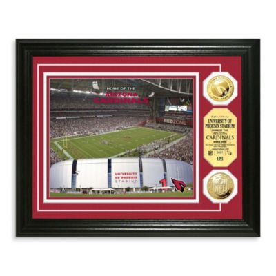 Arizona Cardinals NFL® Stadium Gold Coin Photo Frame