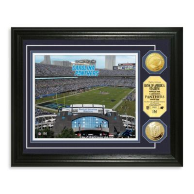 Carolina Panthers NFL® Stadium Gold Coin Photo Mint