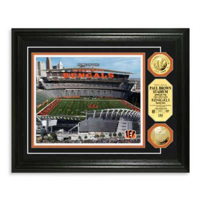 Cincinnati Bengals NFL® Stadium Gold Coin Photo Mint