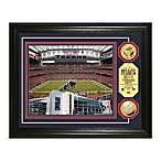 Houston Texans NFL® Stadium Gold Coin Photo