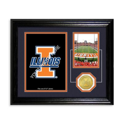 University of Illinois Fan Memories Coin and Stadium Photo Mint