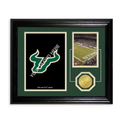 University of South Florida Fan Memories Desktop Photo Mint Frame