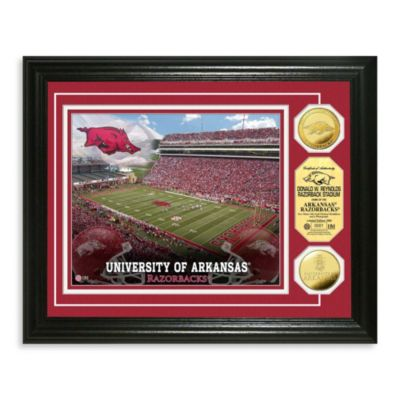 University of Arkansas Collegiate Home Field Gold Coin Photo Mint Frame