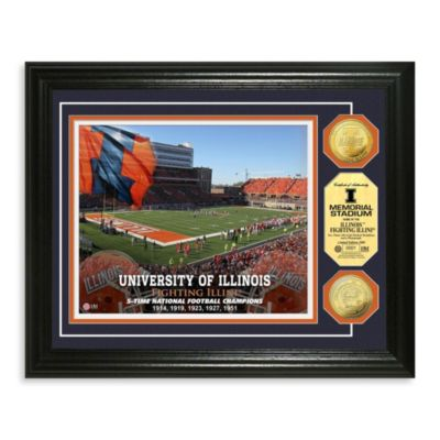 University of Illinois 13-Inch x 16-Inch Stadium Gold Coin Photo Mint Frame