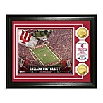 Indiana University 13-Inch x 16-Inch Football Stadium Gold Coin Photo Frame