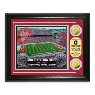 Ohio State 13-Inch x 16-Inch Collegiate Stadium Gold Coin Photo Mint Frame