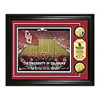 University of Oklahoma 13-Inch x 16-Inch Stadium Gold Coin Photo Mint Frame