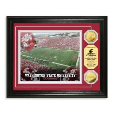 Washington State 13-Inch x 16-Inch Collegiate Stadium Gold Coin Photo Mint Frame