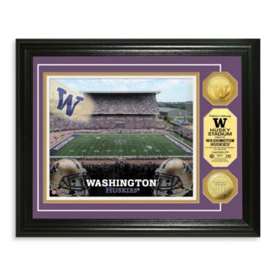 University of Washington 13-Inch x 16-Inch Stadium Gold Coin Photo Mint Frame