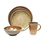 Miso 16-Piece Dinnerware Set