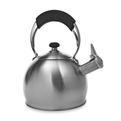 Galaxy Stainless Steel Whistling Tea Kettle
