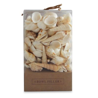 Small Decorative Seashells Box