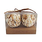 Decorative Seashell Balls (Set of 4)