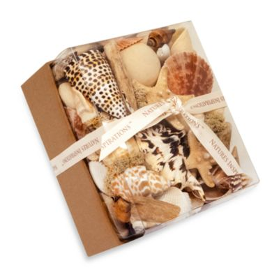 Coastal Collection Potpourri Box