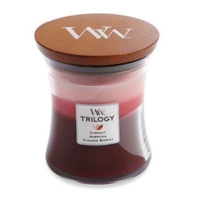 WoodWick® Fruit Temptation Trilogy 10-Ounce Jar Candle