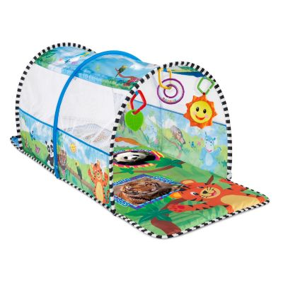 Activity > Baby Einstein 2-in-1 Safari Adventure Gym & Tunnel