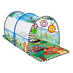 Baby Einstein 2-in-1 Safari Adventure Gym & Tunnel