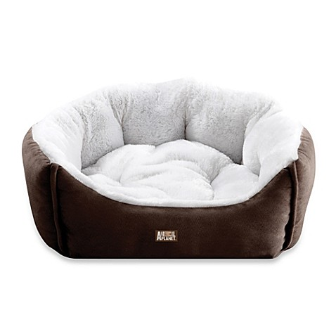 Buy Animal Planet Micro Suede Pet Bed In Brown From Bed