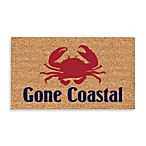 Gone Coastal 18-Inch x 30-Inch Door Mat