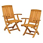 Braxton Folding Arm Chair (Set of 2)