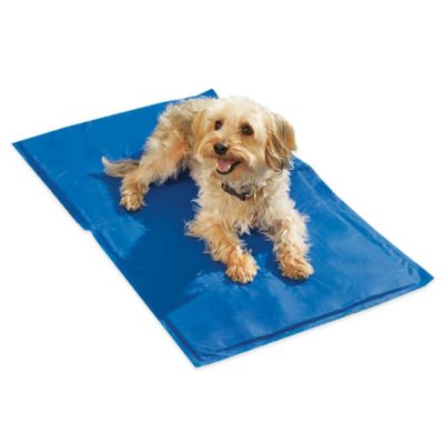 Chillz™ Comfort Cooling Gel Extra-Large Pet Pad