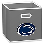 NCAA Penn State University Fabric Storage Drawer in Grey