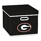 NCAA University of Georgia Storage Cube with Cover in Black