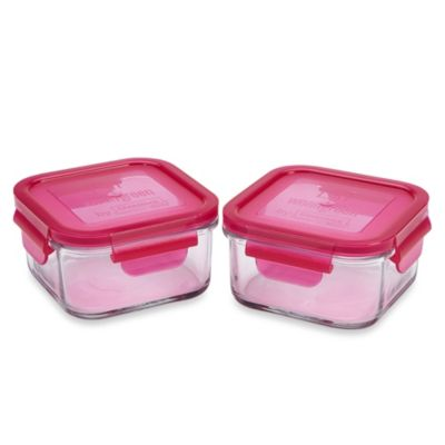 Wean Green® 16-Ounce Lunch Cube in Raspberry (2-Pack)