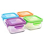 Wean Green® Lunch Cubes in Multi-Colors (4-Pack)