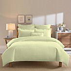 Real Simple® Linear Green Duvet Cover