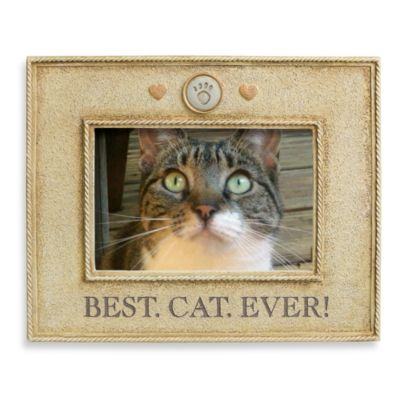 Best Cat Ever! 4-Inch by 6-Inch Photo Frame